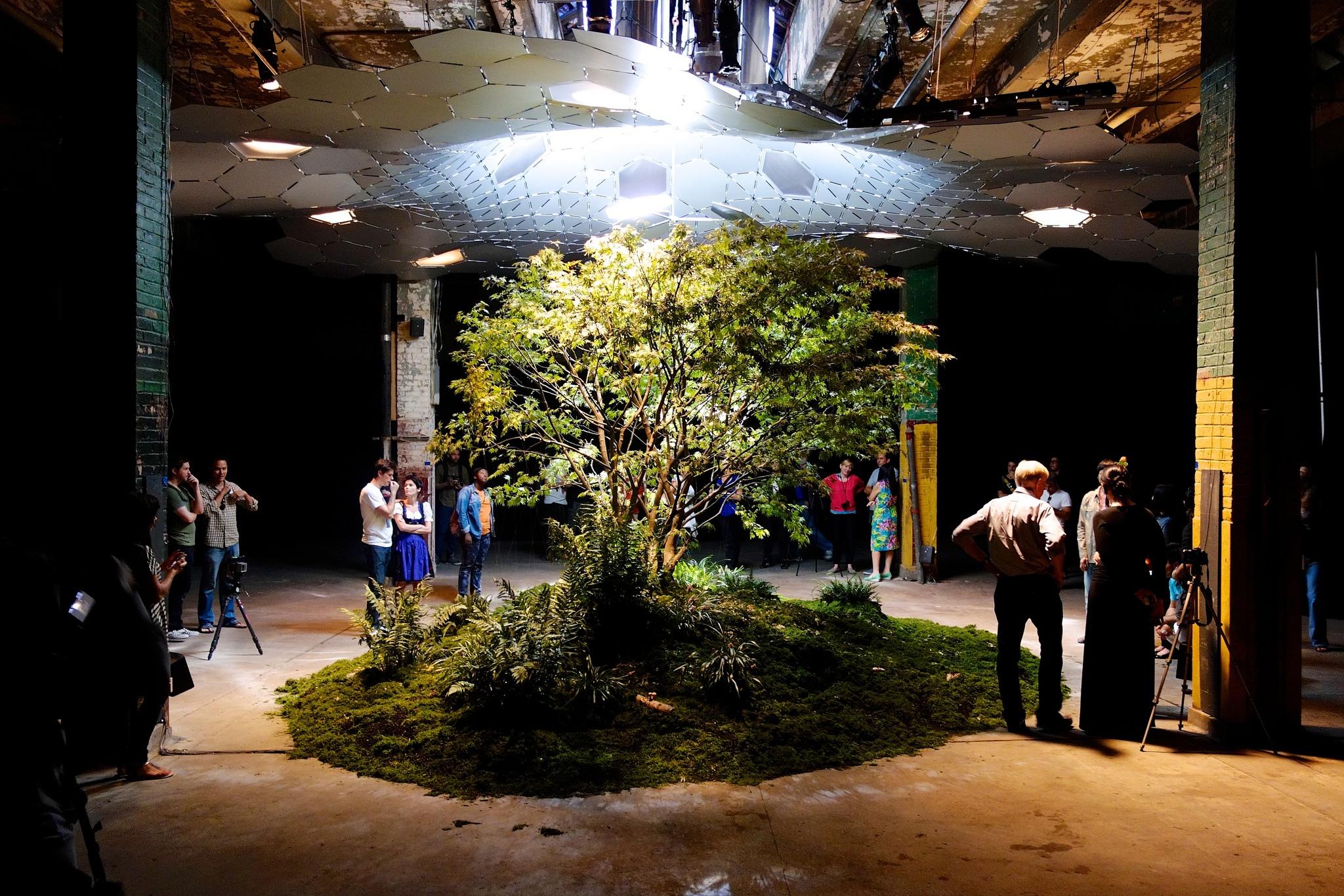 """Untergrund-Park """"Lowline"""" New York"""