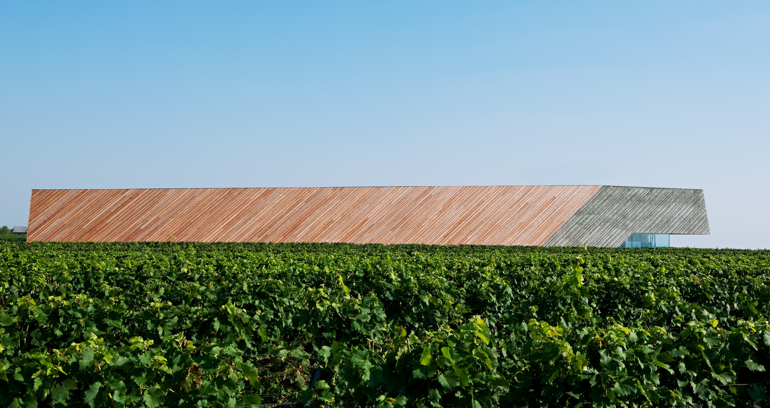 Weingut Preisinger, Burgenland
