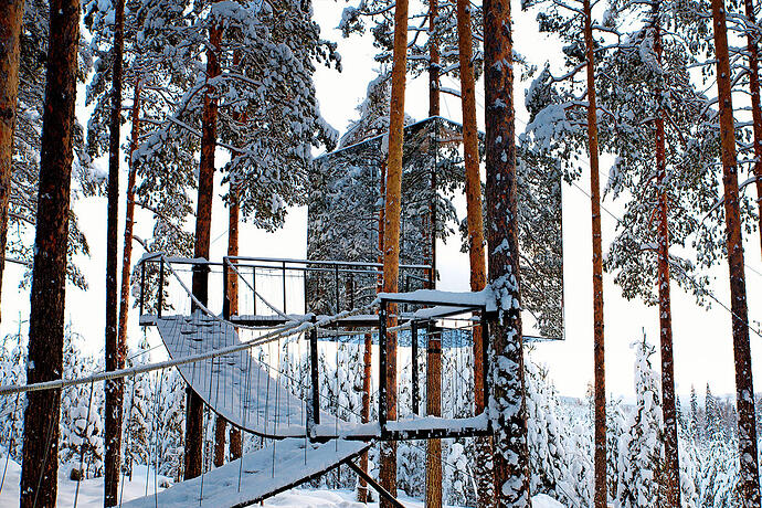 "The Swedish ""Treehotel"""
