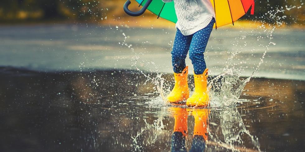 Sinn und Unsinn von Regenwassernutzung