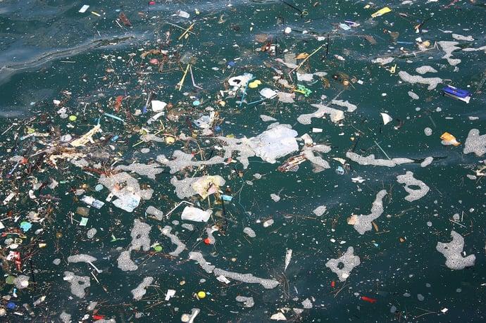 Pacific Garbage Screening